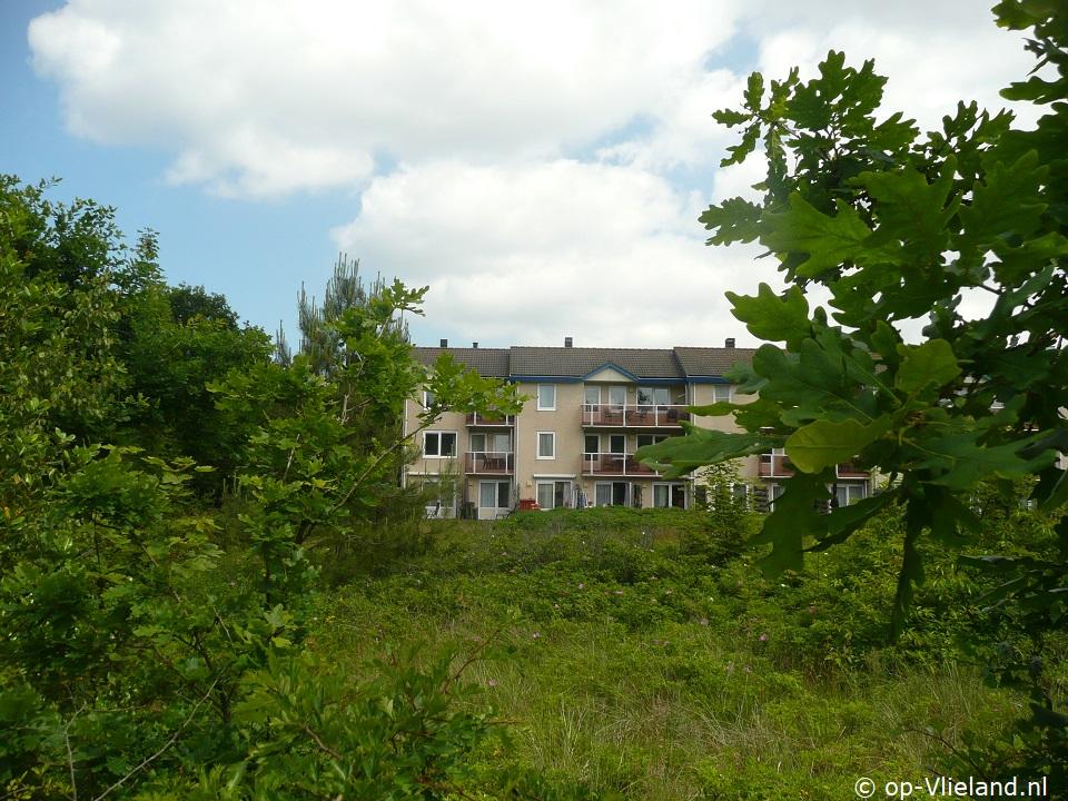 Kleinekamps (Eureka 22), appartement voor 2 personen in Eureka in het bos