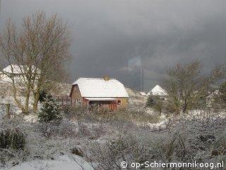 Winterkoning.