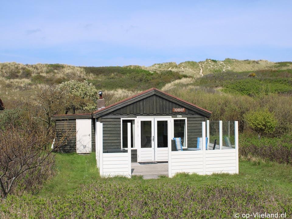 Ammy de Kaap, vakantiehuis voor 4 personen in de duinen