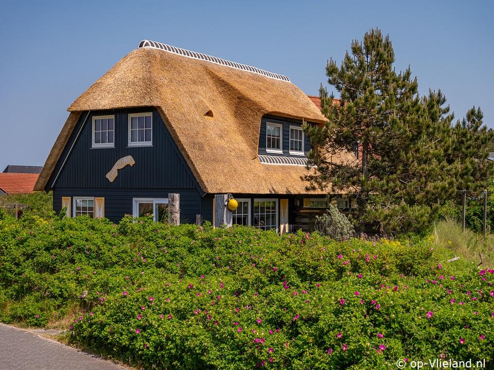 Cranberry Hill, huisje voor 5 personen in de duinen bij het strand