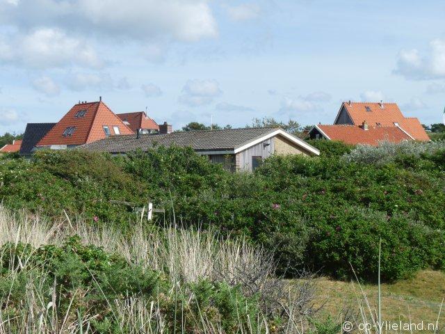 De Tille, 5 persoons vakantiehuis in de duinen bij strand en manege