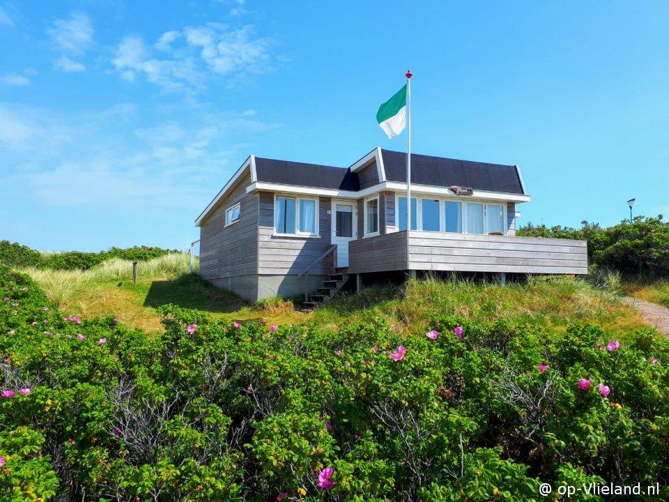 Fazant, 6 persoons vakantiehuis in de duinen