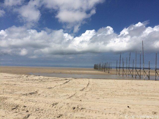 Flierefluiter, vakantiehuis voor 6 personen in de duinen bij het strand