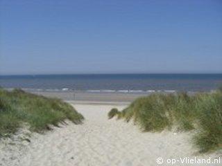 Hagedis, vakantiehuis voor 6 personen in de duinen bij de manege
