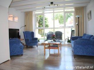 Yn `e Tûn, vakantiehuis voor 2 personen in het dorp