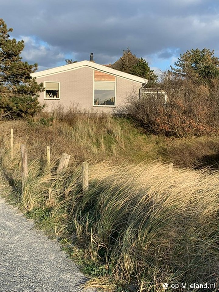 Zeejonker, vakantiehuis voor 5 personen in de duinen bij het strand