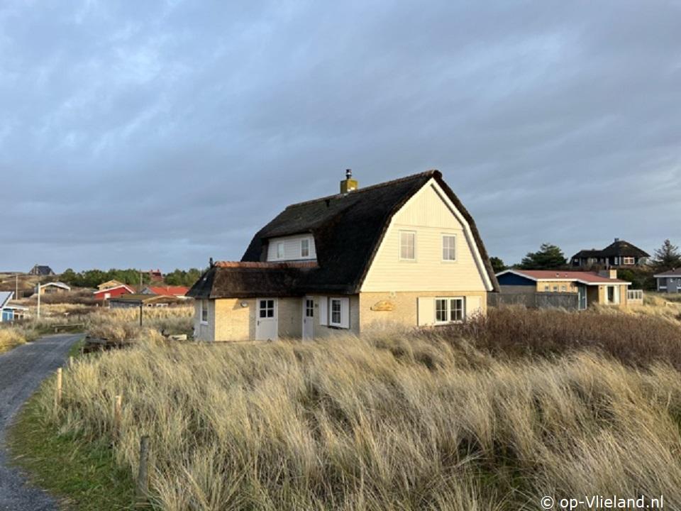 Zonnebloem, vakantiehuis voor 10 personen in de duinen bij het strand
